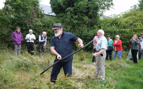 Mark O'Ferrall and Cllr Luie McEntire mow Pat Murphys meadow at The Haggard in Moyne.